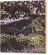 Styled Environment-the Modern Trendy Cheetah Wood Print