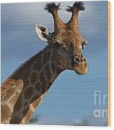 Stylish Giraffe Wood Print