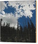 Subalpine Summer Skies Wood Print