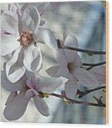 Sublime Magnolia Wood Print