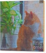 Suburban Jungle Cat Wood Print