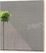 Suburban Minimalism Wood Print