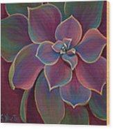 Succulent Delicacy Wood Print