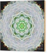 Succulent Mandala Wood Print
