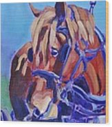 Suffolk Punch Draft Horse Plow Match Wood Print