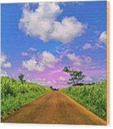 Sugar Cane Sunrise Wood Print