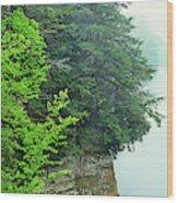 Sugar Creek, Turkey Run State Park Wood Print