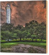Sulfur Springs Tower Wood Print