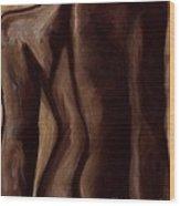 Sultry Nude Brown Wood Print