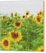 Sultry Sunflowers Wood Print