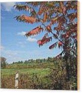 Sumac Fence Wood Print