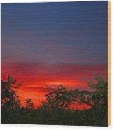 Sumac Sunset Wood Print
