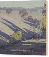 Summer Afternoon Shadows Wood Print by Graham Gercken