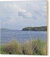 Summer At Guana Lake Wood Print