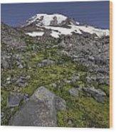 Summer At Rainier Wood Print