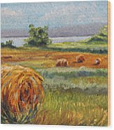 Summer Bales Wood Print