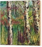 Summer Birch Wood Print