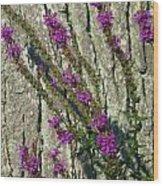 Summer Bloom 2 Wood Print
