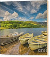 Summer Boating Wood Print