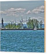Summer Breeze From Lasalle Park Wood Print