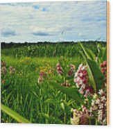 Summer Breeze Wood Print