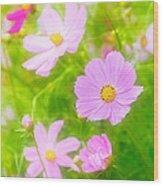 Summer Colours Wood Print