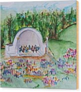 Summer Concert In The Park Wood Print