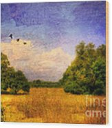Summer Country Landscape Wood Print