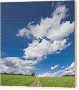 Summer Day Blue Sky Green Grass Wood Print