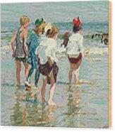 Summer Day Brighton Beach Wood Print