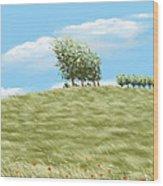 Summer Day Wood Print