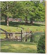 Summer Dreaming Wood Print
