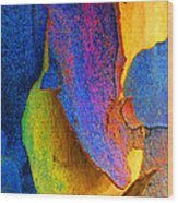 Summer Eucalypt Abstract 11 Wood Print