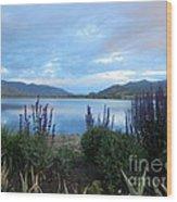 Summer Evening At Lake Osoyoos Wood Print