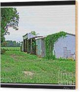 Summer Farm Sheds Wood Print