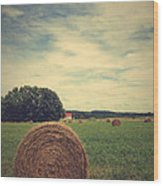 Summer Field Of Dreams Wood Print