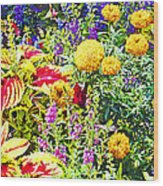 Summer Flower Garden Poster Print Wood Print