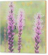 Summer Flowers Of The Blue Ridge Parkway II Wood Print