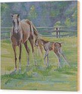 Summer Foal Wood Print