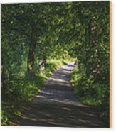 Summer Forest Road Wood Print