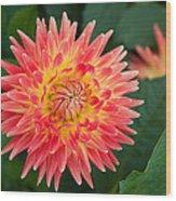 Summer Garden Joy Wood Print