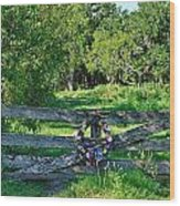 Summer Gate Wood Print