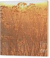 Summer Glow Wood Print