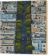 Summer Green On Lombard Street Wood Print