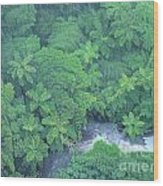 Summer Green Wood Print