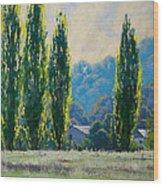 Summer Greens Wood Print by Graham Gercken
