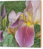 Summer In Bloom 2 Wood Print