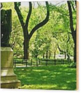Summer In Central Park Manhattan Wood Print