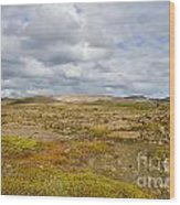 Summer In Iceland Wood Print