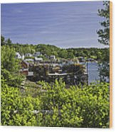 Summer In South Bristol On The Coast Of Maine Wood Print